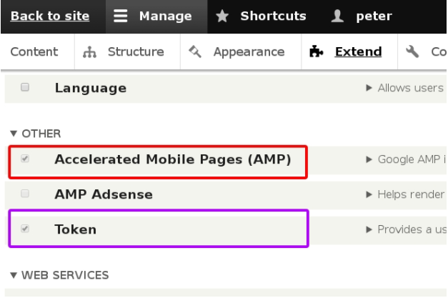 AMP e commerce home page