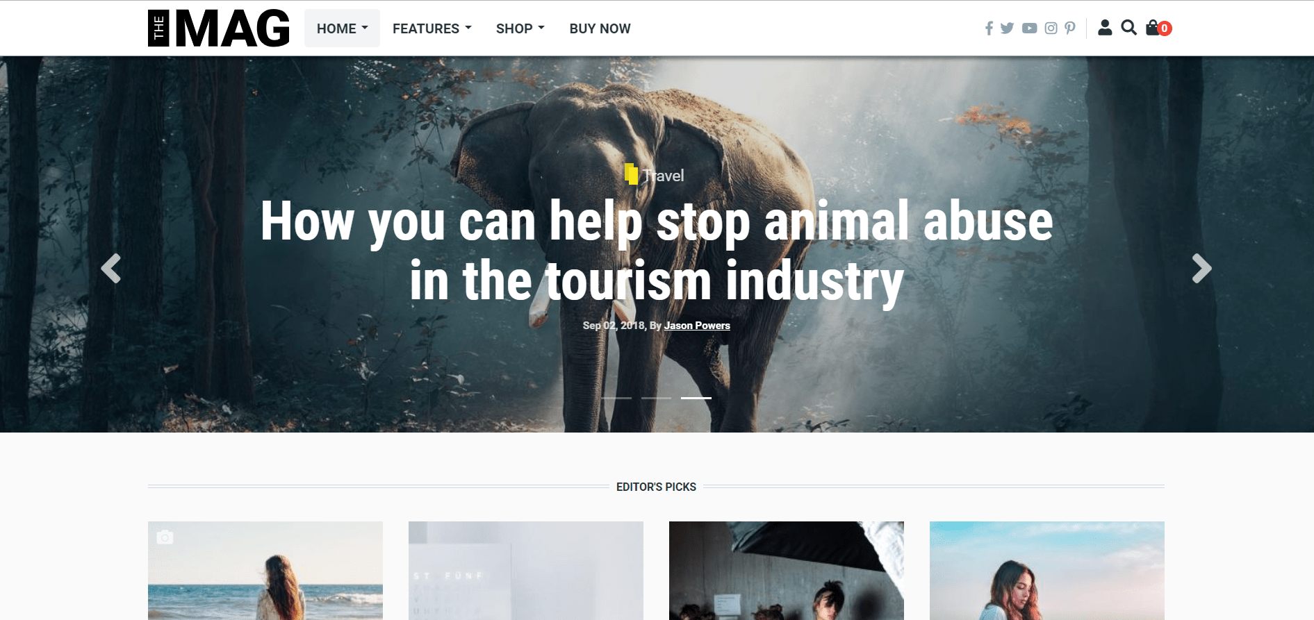Best Drupal Theme: TheMAG by PinkDexo