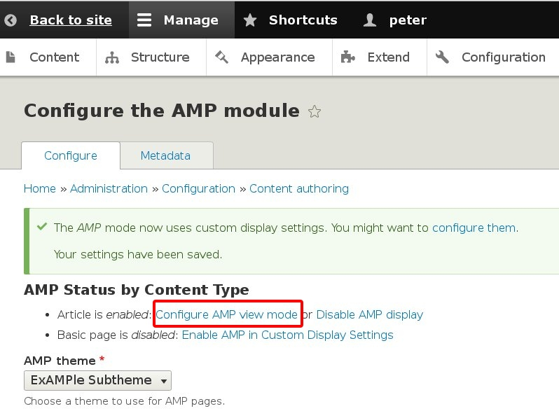 How To Get Started With Accelerated Mobile Pages  AMP  Single Grain AMP Version