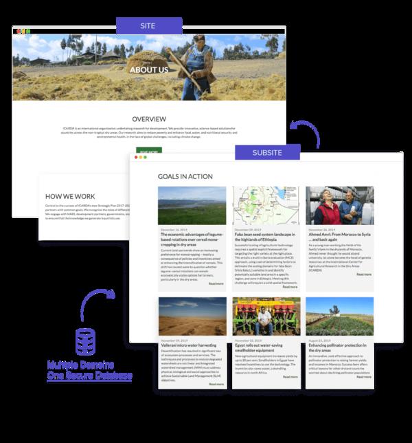 Build multiple websites using same CMS
