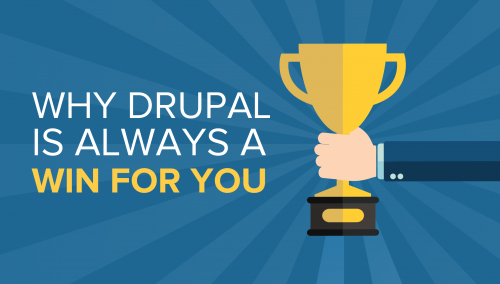 Why Drupal is the Best CMS for Your Website